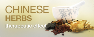 Tradicional Chinese Medicine Herbs therapeutic effect